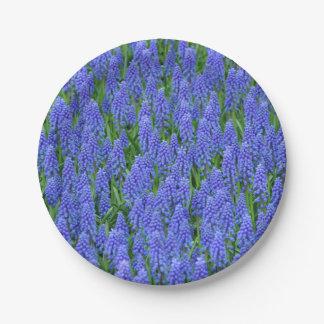 Purple muscari spring flowers 7 inch paper plate