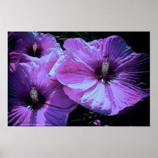 Purple ones poster