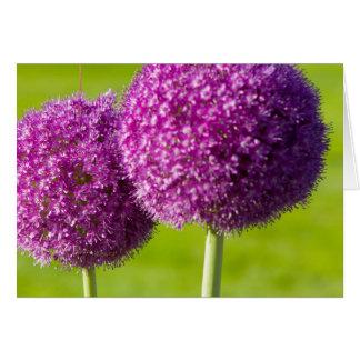 Purple Onion Flowers in Boston Public Garden Greeting Card