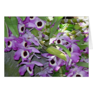 purple orchid blank greeting card