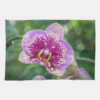 Purple orchid kitchen towel