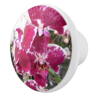 Purple Orchids Ceramic Knob