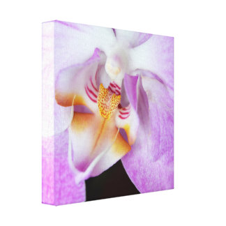 Purple Orchids Gallery Wrap Canvas