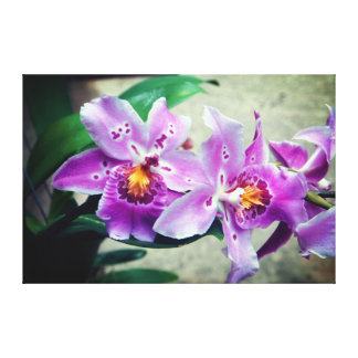Purple Orchids Wrapped Canvas Print