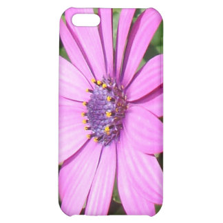 Purple Osteospermum Against Green Leaves Cover For iPhone 5C