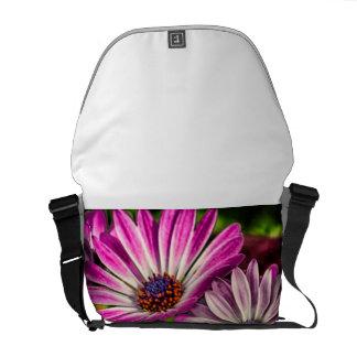 Purple Osteospermum Messenger Bags