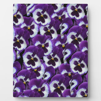 Purple_Pansies_Bouquet,_ Display Plaque
