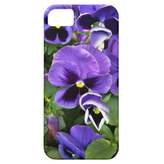 purple pansies iPhone 5 cases