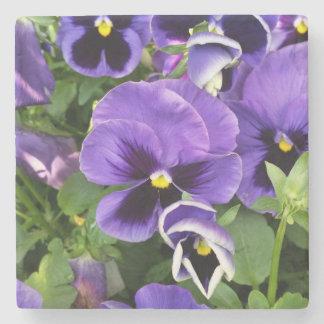 purple pansies stone coaster