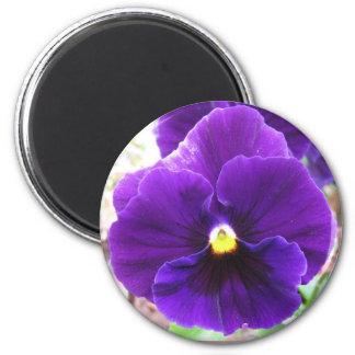 Purple Pansy 6 Cm Round Magnet
