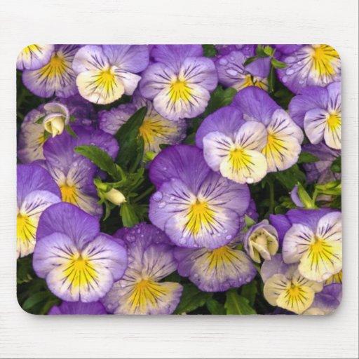 Purple Pansy Mousepad