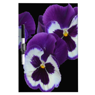 Purple_Pansy_Posy,_ Dry Erase Board