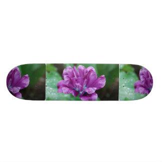Purple Parrot Tulip Skateboard Decks