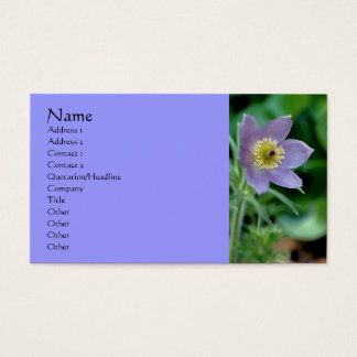 Purple Pasque Flower Photography Business Card