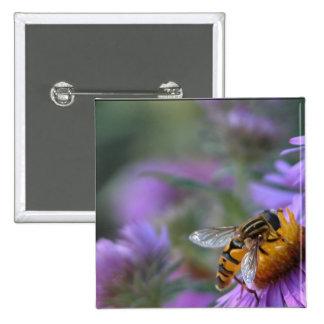 Purple Passion Bee Square Button