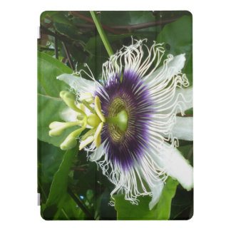 PURPLE PASSION FRUIT FLOWER iPad PRO COVER