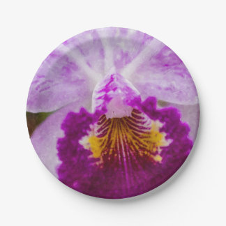 Purple Passion Orchid Paper Plate