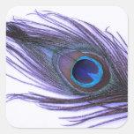 Purple Peacock Feather Sticker