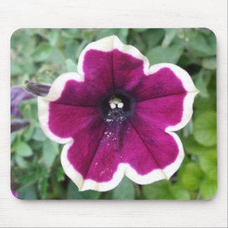 Purple Petunia Mouse Pad