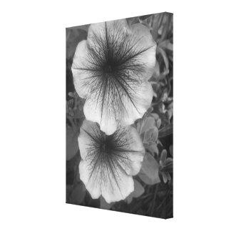 Purple Petunias (Black & White) Stretched Canvas Print