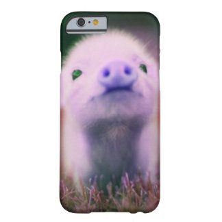 Purple Pigsy Barely There iPhone 6 Case