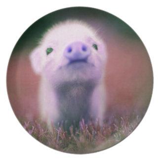 Purple Pigsy Plate