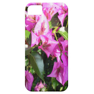 Purple Pink Bougainvillia In Blossom iPhone 5 Case