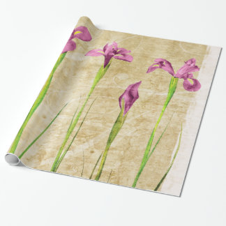 Purple Pink Iris Flowers Brown Background Floral Wrapping Paper
