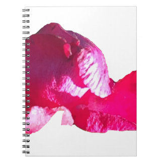 Purple Pink Rose Bud Flowers Spiral Note Books