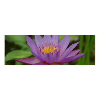 Purple Pink Water Lily Flower Business Card Templates