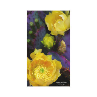 Purple prickly pear opuntia cactus yellow flowers canvas print