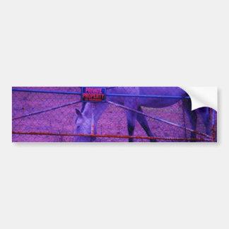 Purple Private Property Horse Bumper Sticker