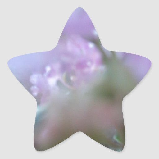 Purple Redbuds Abstract Star Stickers