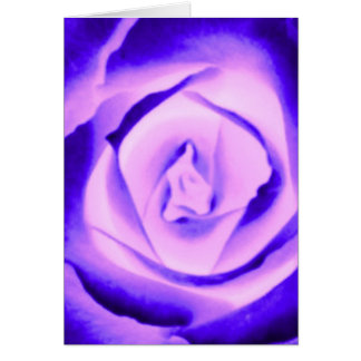 Purple Rose Bud Greeting Card