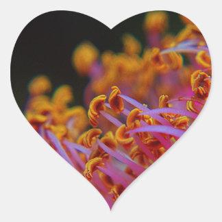Purple Rose - close Up macro photography Sticker