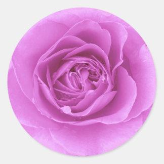 Purple Rose Design Sticker