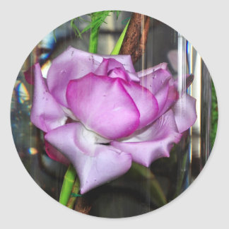 Purple Rose in a Water Filled Glass Round Stickers