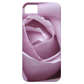 Purple Rose iPhone 5 Covers