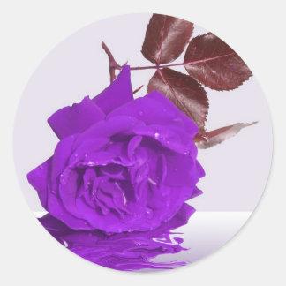 Purple Rose of Fibro Round Sticker