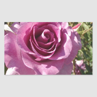 Purple Rose Rectangular Sticker
