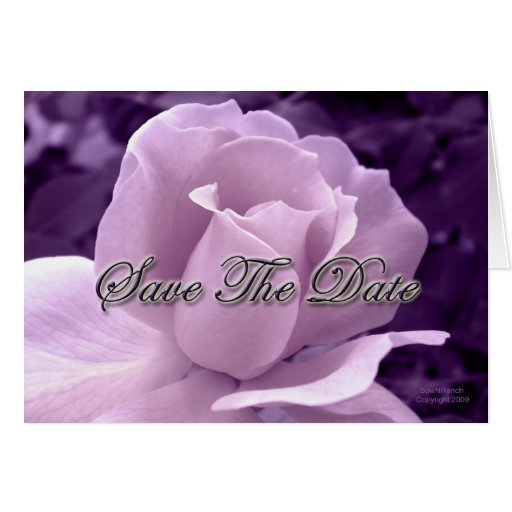 Purple Rose Save the Date Cards