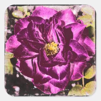 Purple Rose unique and elegant sticker