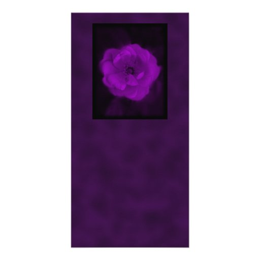 Purple Rose. With Black and Dark Purple. Custom Photo Card
