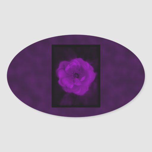 Purple Rose. With Black and Dark Purple. Oval Sticker