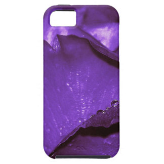 Purple Roses Flower Case For iPhone 5/5S