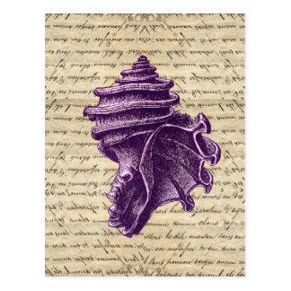 Purple shell on vintage letter  background postcard