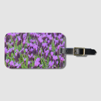 Purple Spanish Lavender Flower Luggage Tag