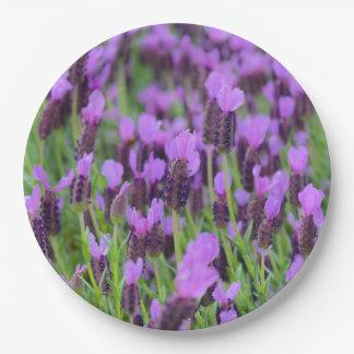 Purple Spanish Lavender Flower Paper Plate