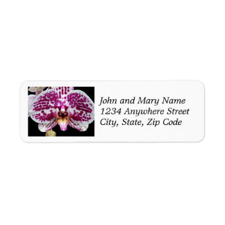 Purple Speckled Moth Orchid Floral Return Address Return Address Label