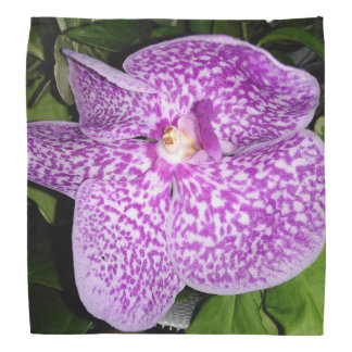 Purple Speckled Orchid Bandana